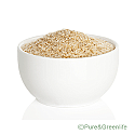 Psyllium Husk Extract Powder